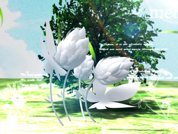 http://www.swift3.com/blog/asahi01.jpg